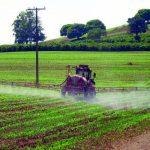 Água de oito em cada dez municípios do Paraná apresenta 'coquetel' de agrotóxicos