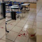 Adolescente suspeito de esfaquear professor causa confusão no MPPR