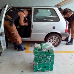 Cães farejadores da PM encontram droga escondida dentro de carro em Umuarama