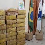 PM apreende mais de meia tonelada de maconha em Pérola