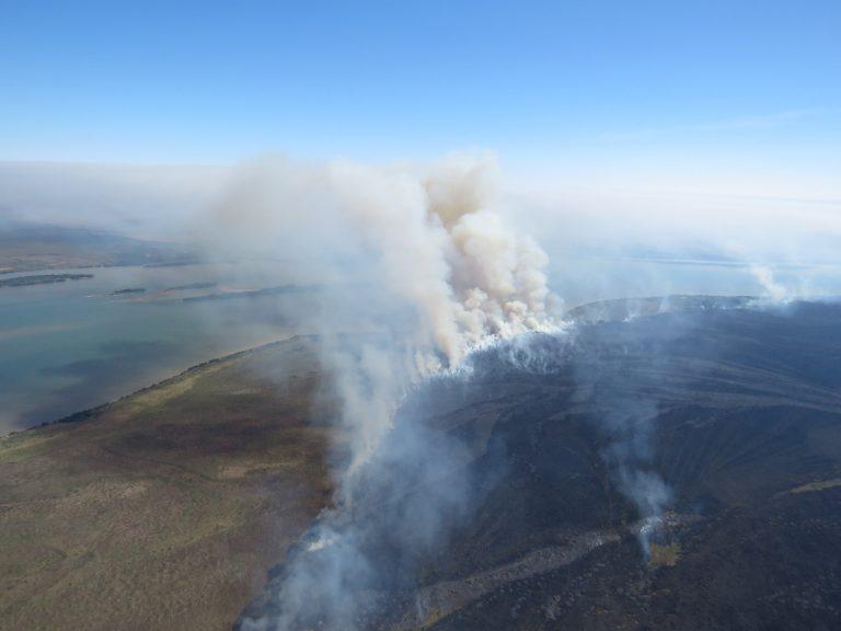 Incêndio em reserva de Ilha Grande é controlado após 11 dias