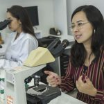 Universidade desenvolve teste rápido e seguro contra dengue