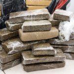 Polícias apreenderam 107 toneladas de drogas de janeiro a setembro