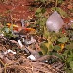 Moradores do jardim Belo Monte reclamam do mato alto e lixo em terrenos baldios