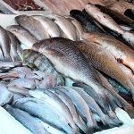 Quaresma eleva o consumo de peixe e movimenta o setor de pescado