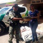Polícia Ambiental doa 118 quilos de peixes ao Lar São Vicente de Paulo