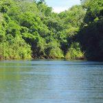Pesca nos rios Ivaí e Piquiri está liberada a partir desta sexta-feira
