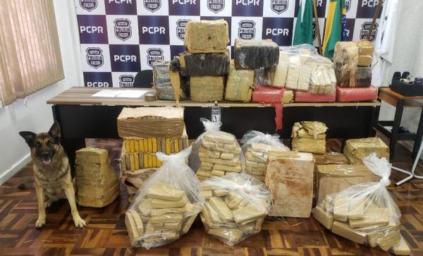 Polícia Civil apreende mais de meia tonelada de maconha no Sul do Paraná
