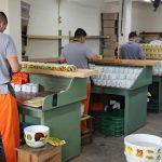 Paraná recebe selo nacional por oferta de atividades profissionais aos presos