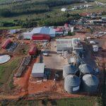 Levo Alimentos inicia o abate de frangos em Umuarama com planos promissores