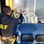 Em fim de semana gelado, PRF apreende quase uma tonelada de maconha no Paraná