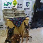 Policiais militares do Batalhão de Polícia de Fronteira apreendem mais de 40 quilos de maconha no PR