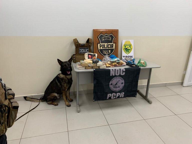 Operação em Rondon resulta em apreensão de droga e deixa prejuízo de R$ 350 mil aos traficantes