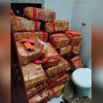 Polícia Civil apreende quase meia tonelada de maconha em Umuarama