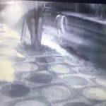 Homem é preso após ser flagrado andando pelado na rua Cambé, em Umuarama