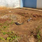 Polícia Civil faz novas buscas por corpos de Kawany e Rubens no jardim Arco Íris