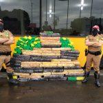 Polícia apreende mais de meia tonelada de maconha na PR-323, em Cianorte