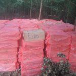 Polícia Militar apreende 350 caixas de cigarros contrabandeados em Iporã