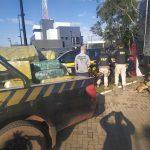 Polícia apreende quase uma tonelada de maconha na região de Guaíra