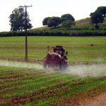 Novo decreto do governo federal sobre agrotóxicos exige capacitação para aplicadores